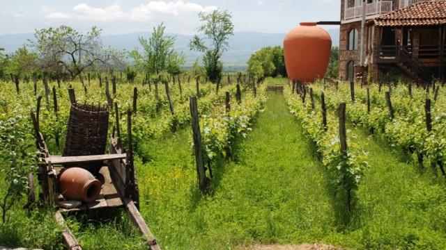 Вино в грузинской кухне имеет важное место, так как ни одно застолье не обходится без него
