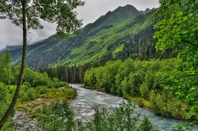 Знаменитые на весь мир заповедники Кавказа