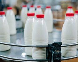 В регионе СКФО подтвержден рост выпуска питьевого молока