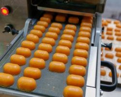 В СКФО запущен кондитерский бизнес-проект