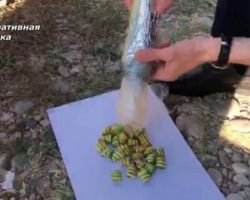 В Абхазии изъято наркотическое вещество в крупном размере