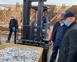В Дагестане появится современное предприятие по переработке рыбы