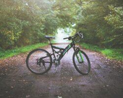 Строительство Кавминводского велотерренкура: объявлен открытый конкурс