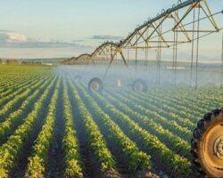 Сельскохозяйственные земли Чечни будут оборудованы орошением