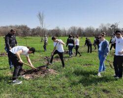 «Сад Памяти»: в Кабардино-Балкарии высадят почти 220 тысяч деревьев