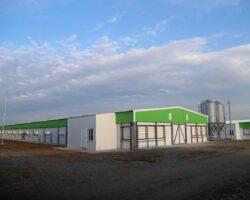 В Ингушетии введут в эксплуатацию новый птицекомплекс