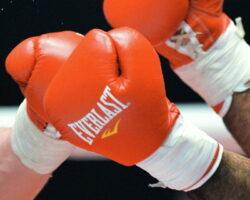 Вечер бокса во Владикавказе: осетинские спортсмены одержали яркие победы
