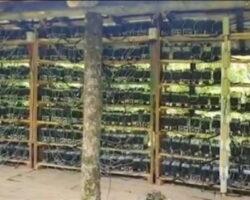 В Абхазии выявлено еще 8 нелегальных  «майнинг»-ферм