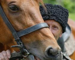 «Терский конный завод» экспортировал лошадей в Монголию